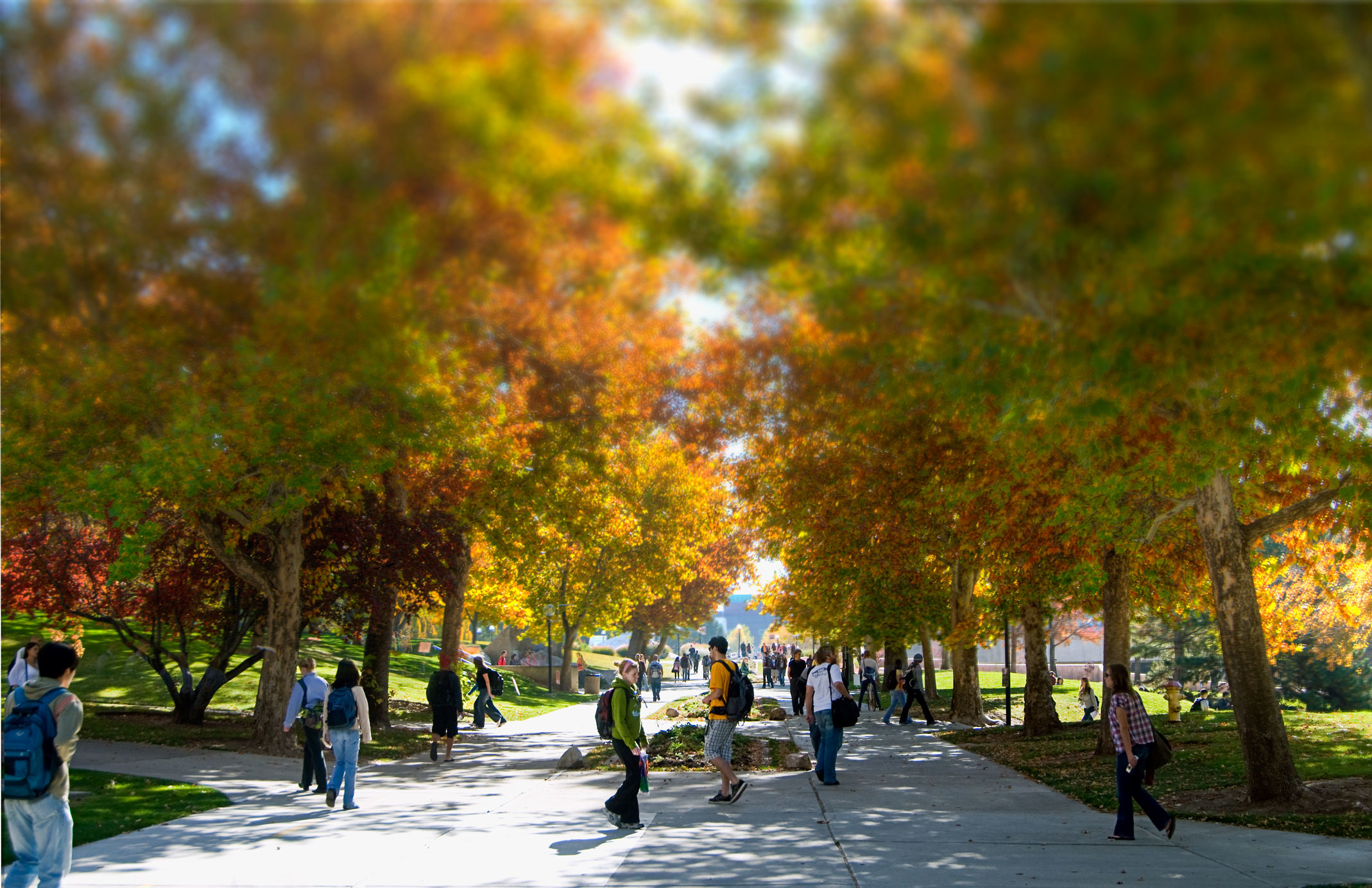 6campus_walkway-with_students