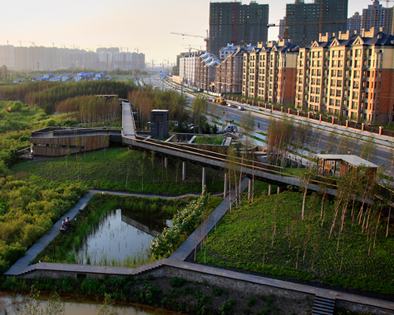 Center for the Living City Co-sponsored Symposium at TUDelft on Water Resilient Cities