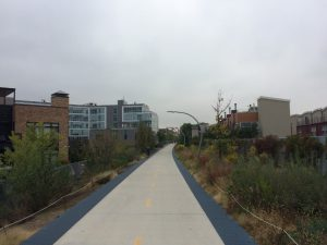 Not all new parks are linked to gentrification in low-income neighborhoods